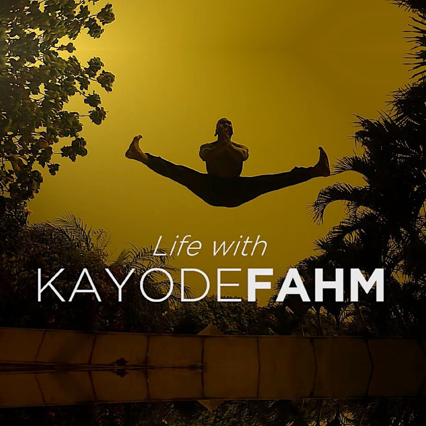Life with Kayode Fahm